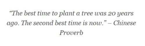 Quote Blog Post